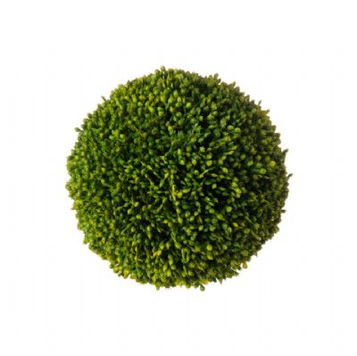 Sedum Ball (Large)