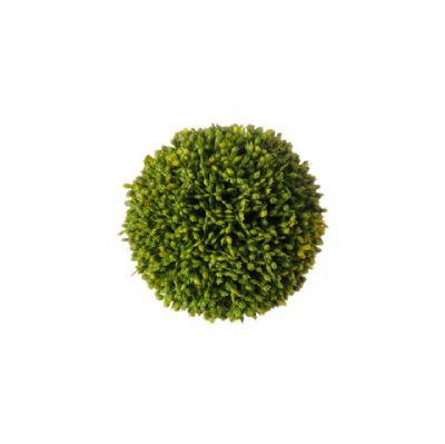 Sedum Ball (Small)