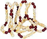 Popcorn-Cranberry Garland