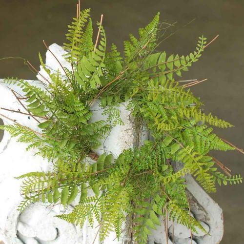 Candle Ring Whistler Fern 6.5