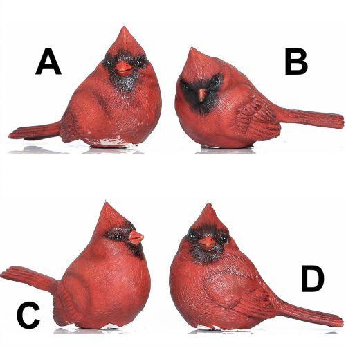 Cardinal Birds | Small