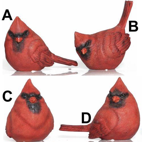 Cardinal Birds | Medium