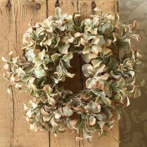 Candle Ring Splendid Sedum 3