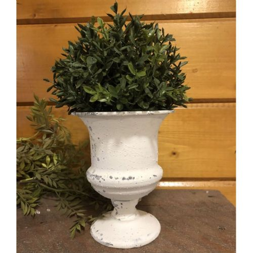 Chippy Farmhouse Creamy White Urn 5.25""