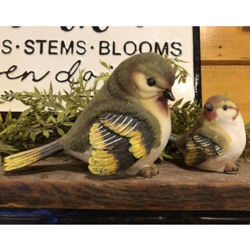 Birds | Large