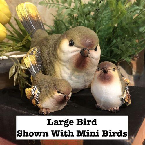 Birds | Mini