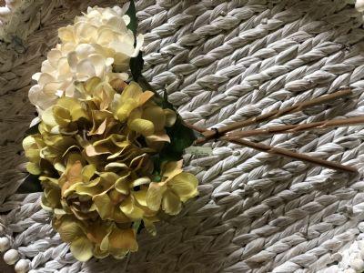 Hydrangea Bundle (3 Assorted)