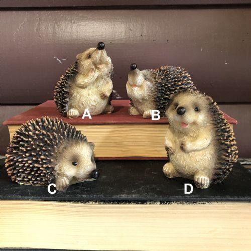 Hedgehog Small