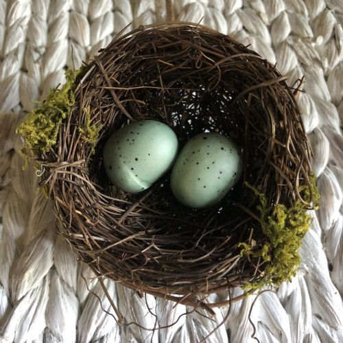 Nest W/2 Eggs Small