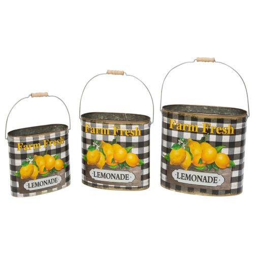 Lemon Set/3 Lemonade Buckets