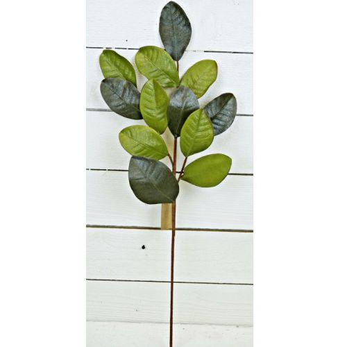 Magnolia Leaf Spray 30
