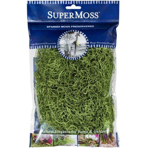 Moss Preserved Spanish Moss