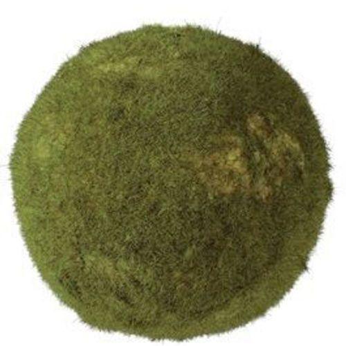 Moss Orb 5.5