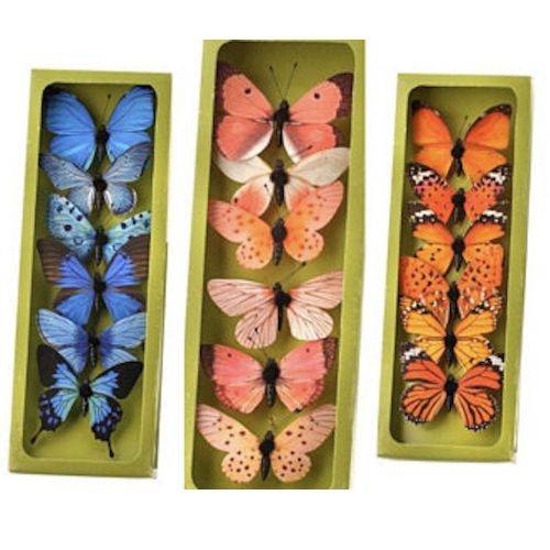 Butterflies Box of 6 Assorted