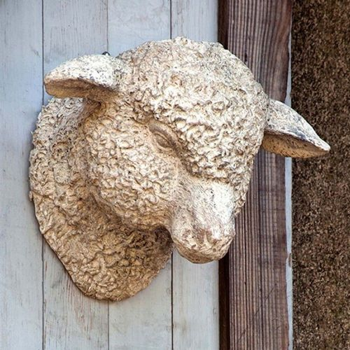 Wall Mount Lamb Head