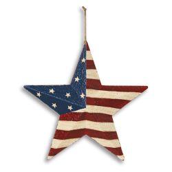 AC Americana Star 12