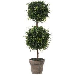 Topiary Double Ball Boxwood 24