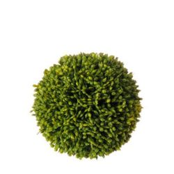 Sedum Ball (Small)
