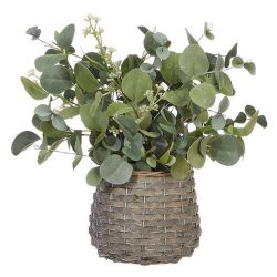 Eucalyptus Arrangement 13.75