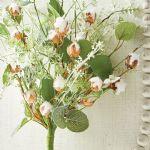 Cotton & Eucalyptus Bush