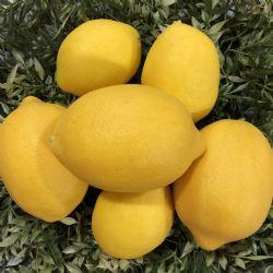 Lemon Faux Lemons In Bag (7)