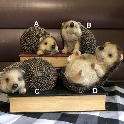 Hedgehog Large