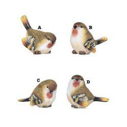 Birds | Small