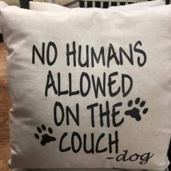 Pillow-No Humans Allowed On The Couch